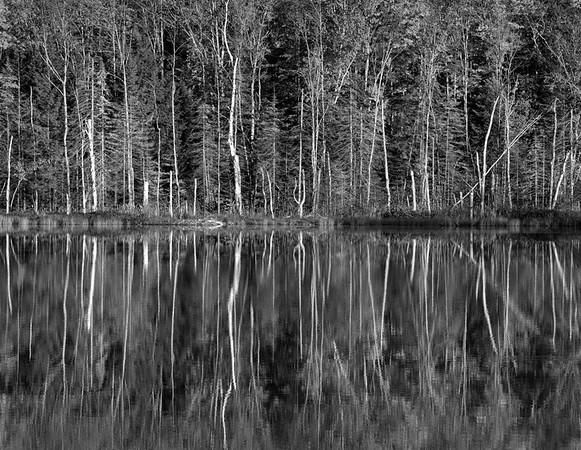 Michigan Reflections