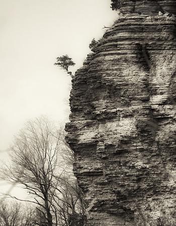LaRue-Pine Hills