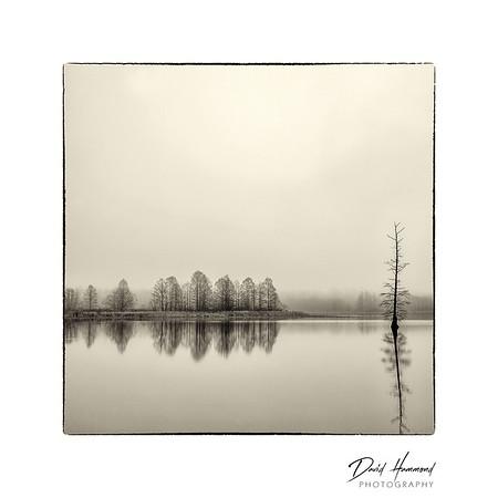 Mermet Lake
