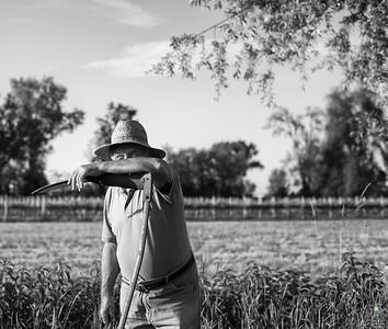 Il mondo contadino. Collina Reggiana, Italy