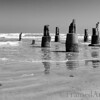 <strong><h4>Galveston Beach Teeth<br> Imagine that Ike turned the sea into a big mouth, who tried to chew the little beach-town  Galveston to pieces  -  it almost succeeded too, but now the remains stands like rotten teeth… Converted to BW in Camera Raw .