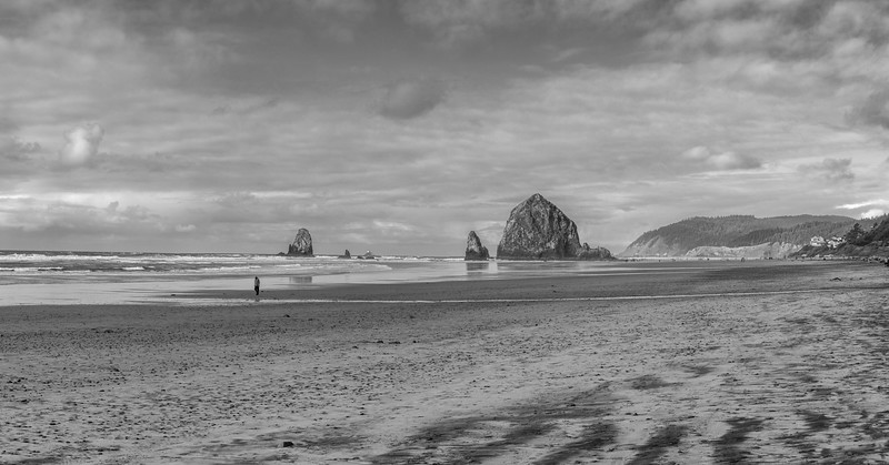 Haystack Rock, Needles and a Beachcomber