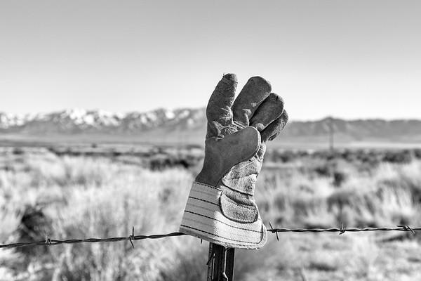 Fence Pole High Five