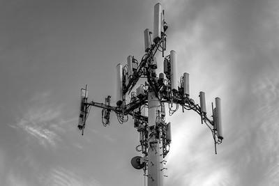 Surveillance Tree
