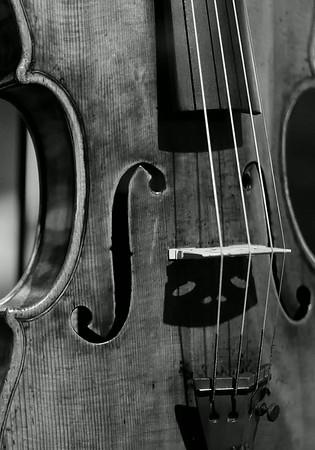 Guarneri violin face