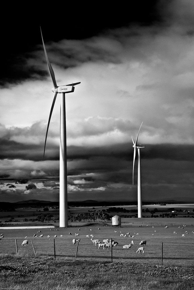 New visions of an old landscape.... wind turbines stand like giants at Waubra, Victoria, Australia.