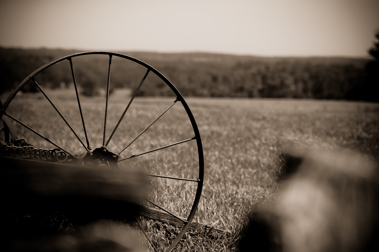 In A Farmer's Field