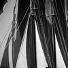 Black and white: Veteran Boat