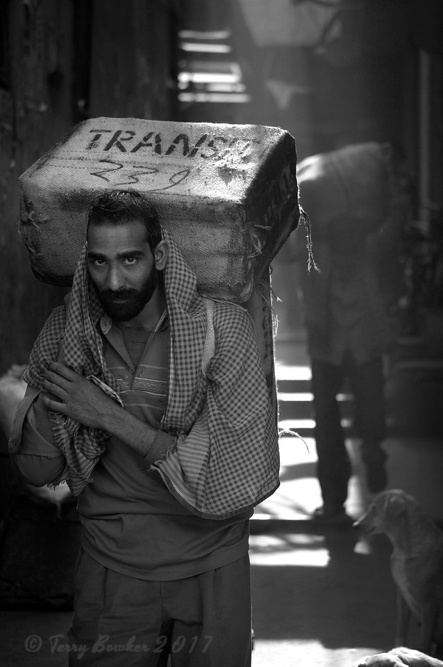 Transit 239, Spice Market, Old Delhi, India