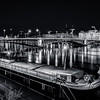University bridge at Lyon in B/W ...
