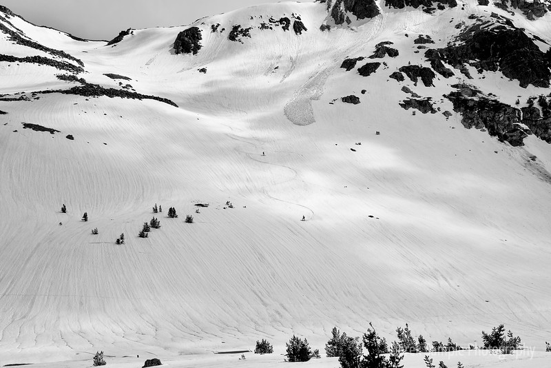 Backcountry Skiers 3