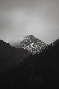 Black and White Nature