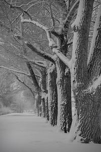 April Snow, Patty Jewett Golf Course, Colorado Springs