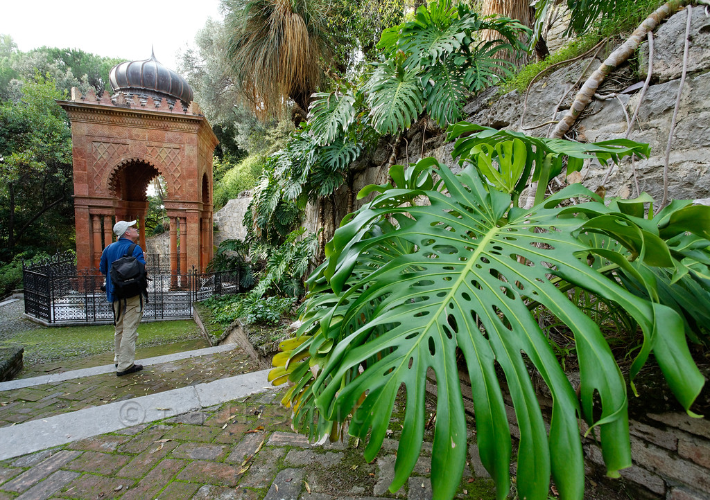 [ITALY.LIGURIA 28980] 'Moorish Kiosk in Hanbury Gardens.'  The Moorish Kiosk in the Hanbury Botanical Gardens is an orientalized mausoleum built in 1886 by the architect Pio Soli. It holds the ashes of Thomas Hanbury, founder of the Hanbury Gardens on the Côte d'Azur near Ventimiglia. The steps leading to the kiosk are flanked by the leaves of Monstera deliciosa. Photo Paul Smit.