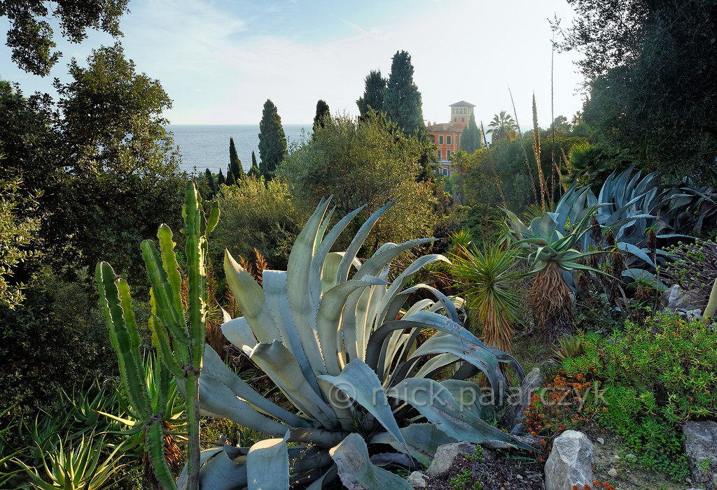 [ITALY.LIGURIA 28955]