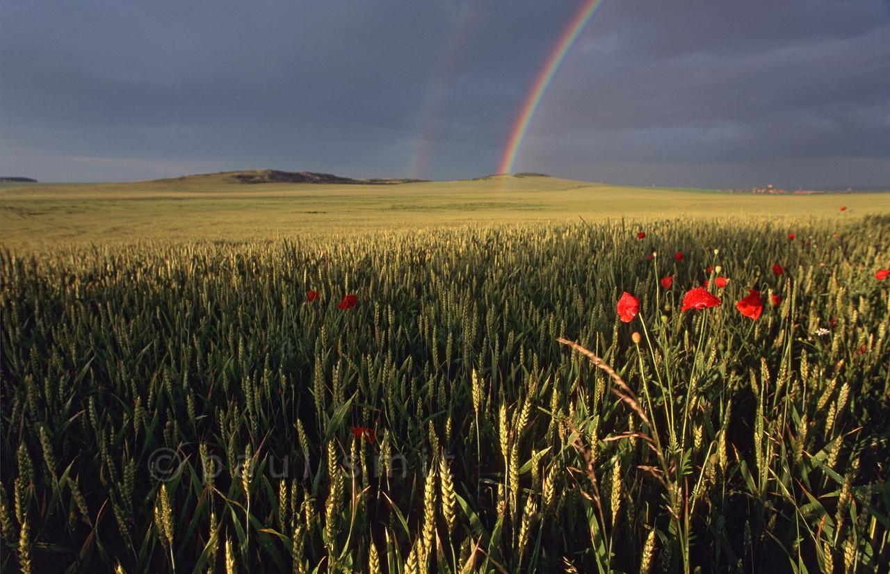 Rainbow over the Thüringen plain.