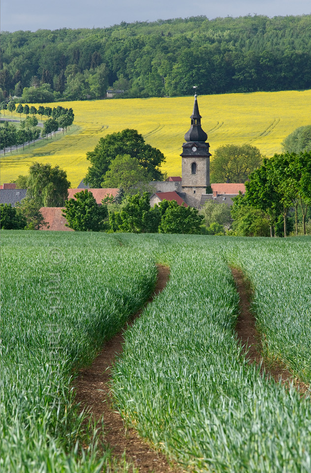 View of Troistedt