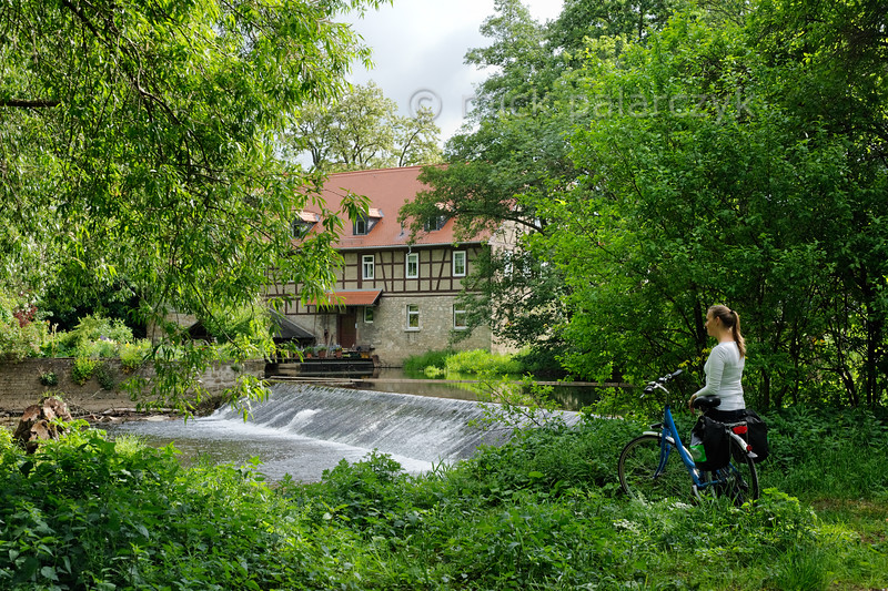Cyclist on the bank of the Ilm near Weimar.
