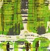 Lime Velocity-Iorillo, AEJIC10-, 50x50 canvas JPG-L