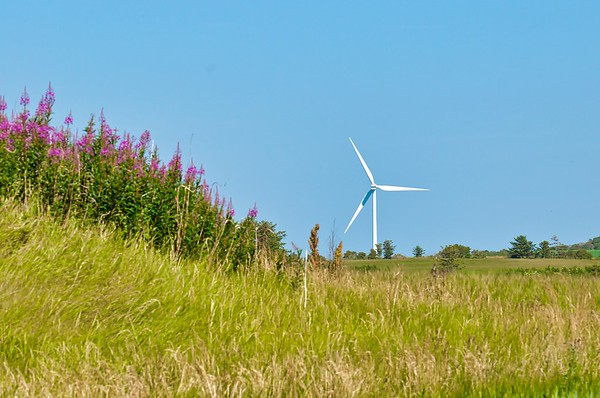 130% Windpower in Thisted