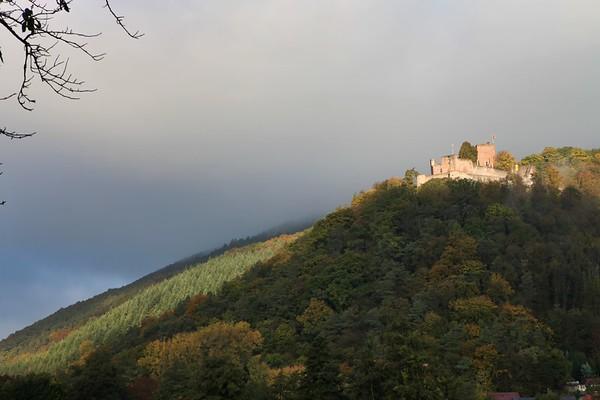 Germany Pfälzerwald/Les Vosges du Nord Biosphere (191 images)