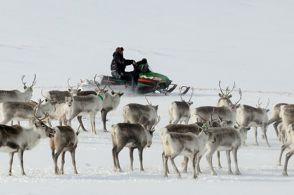 Lapland Sami (27 images)