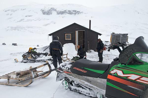 Sami Reindeer Herding