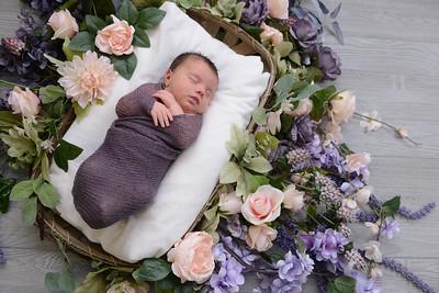 Newborn - Reyenger -0003