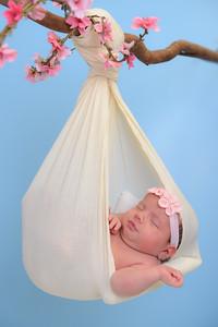 Newborn - Reyenger -0021