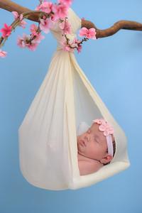 Newborn - Reyenger -0022