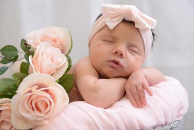 Newborn - Reyenger -0020