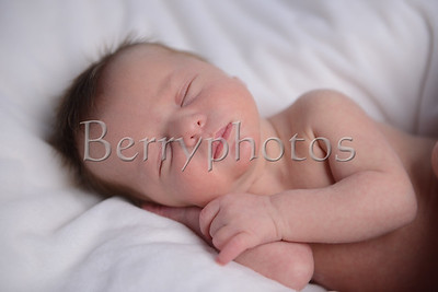 Williams - Newborn - Wall Art 0023