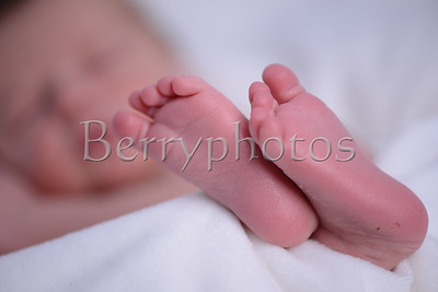 Williams - Newborn - Wall Art 0028