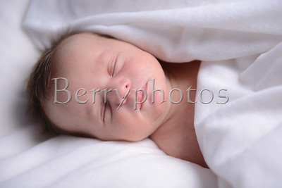 Williams - Newborn - Wall Art 0022