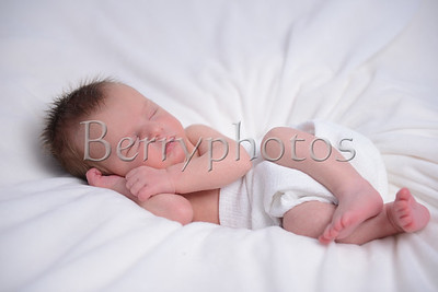 Williams - Newborn - Wall Art 0027