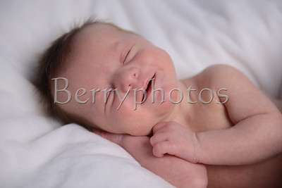 Williams - Newborn - Wall Art 0026