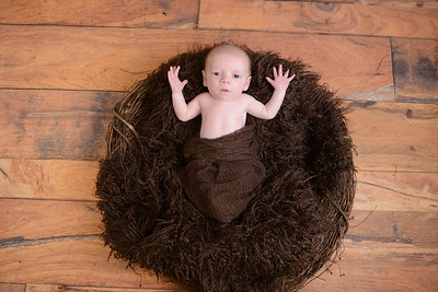 Newborn - Oullette -0037