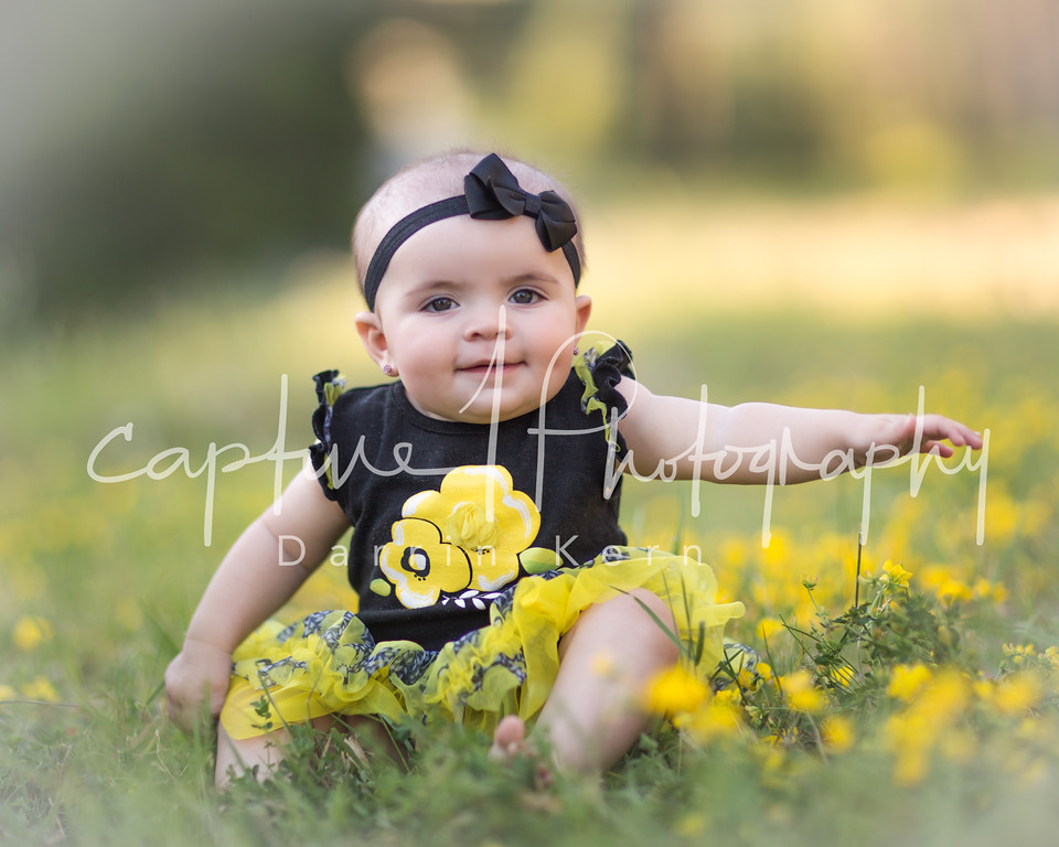 in the yellow flowers