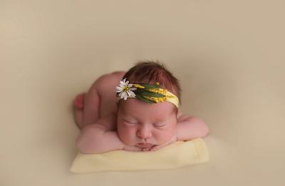 Baby Audrey B