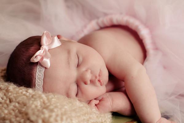 Baby Olivia Gargano