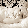 WebsterBabysepia-6884