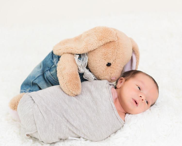 Teddy-16