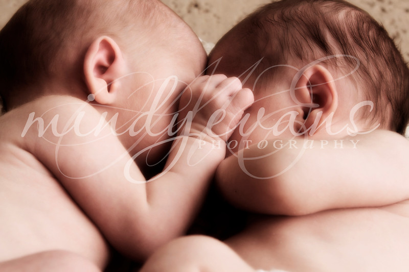 Brothers-3852-2