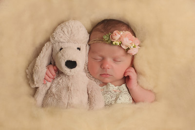 Jillian Duffy- Newborn