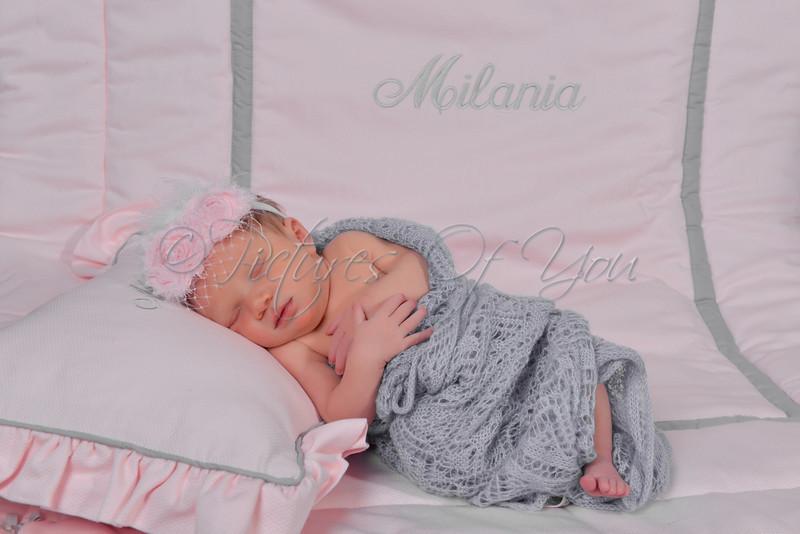 Milania-21