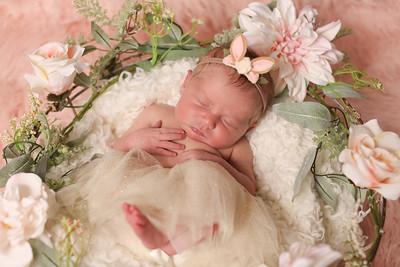 Nora Pritchett- Newborn