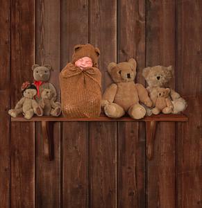 Quincy bear shelf