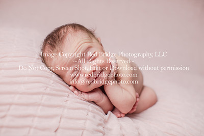 Welcome, Genevieve! : Chapel Hill, NC