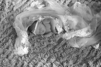 Lisa Eyster Photography