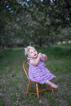 orchard-22